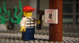 Homme pleure panneau lost dog